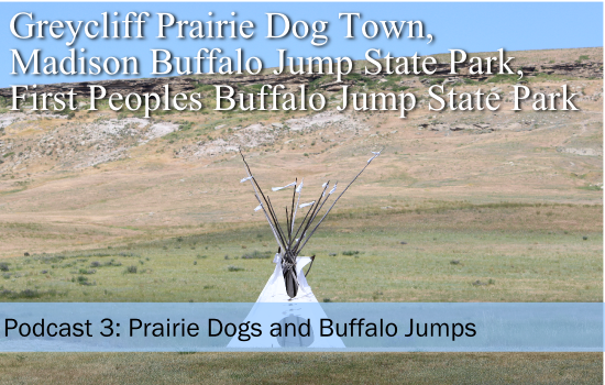 Podcast 3: Prairie Dog Towns and Buffalo Jumps