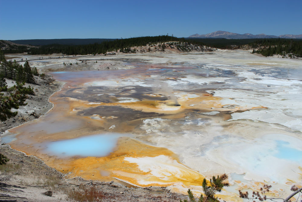 Yellowstone National Park – Norris Geyser Basin